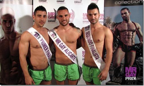 discoteca gay alicante